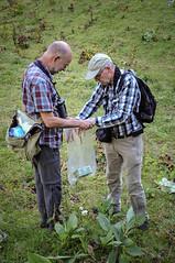 20160808_029_DennisWansink (Dennis Wansink) Tags: zoogdiervereniging zoogdierkamp jura bergen longworth val muis janboshamer adrievanheerden vaud zwitserland