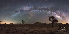 Joshua Tree Milky Way Panorama (Mike Ver Sprill - Milky Way Mike) Tags: joshua tree milky way panorama pano mike michael ver sprill versprill mv galaxy cali california nikon d800 1424 landscape nightscape nightscapers night sky earth amazing trees mountains gorgeous star stars space cosmos light polution travel explore best photography every greatest trails camping camp peter lik style large format printing 29 palms hidden valley gary fong sphere strobist strobe long exposure le high iso outdoor air glow