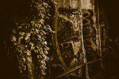 remnants of shadows (mosieKate) Tags: graffiti art berlin berlinwall remnants germany borders german