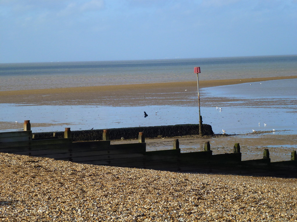 Are Dogs Allowed On Whitstable Beach