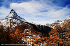 Autumn in Switzerland (baddoguy) Tags: travel autumn sky cloud mountain snow alps tourism forest landscape switzerland october colorful images foliage gornergrat getty zermatt viewpoint bahn gettyimages gettyimagesstock