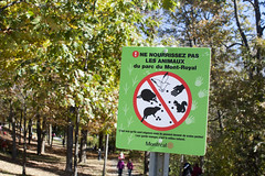 Ne nourrissez pas les animaux! (rfzappala) Tags: park autumn canada fall animals sign do quebec montreal royal du mount feed montroyal parc 2012