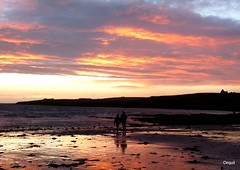 Scapa Beach - Late December Sunset (orquil) Tags: uk winter sunset sky people beach silhouette clouds scotland orkney december colourful cloudscape relections scapa scapaflow orcades