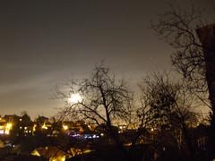 winter night (polfa) Tags: trees moon night stars croatia zagreb winternight polfa