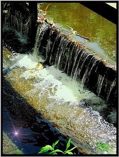 Big Swamp Creek ~ New Hope NY  (New Hope Mills Complex)