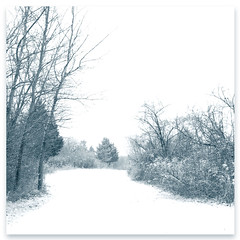 ... winter magic ... (mariola aga) Tags: park trees winter white snow art nature square path trail manual bushes whitebalance winterbeauty shutterpriority coth thegalaxy coth5 rememberthatmomentlevel1 thesunshinegroup sunrays5 rememberthatmomentlevel2 vigilantphotographersunite vpu2 vpu3 vpu4 vpu5 vpu6 vpu7 vpu8 vpu9 vpu10