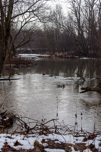 Three Creeks / Metro Park