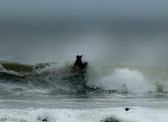 Rhossili Surfer (livin the dream*) Tags: beach water wales waves surfer gower wfc rhossili welshflickrcymru