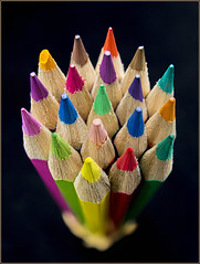 Coloured Pencils 4 (rexboggs5) Tags: pencils canon zoom fisheye coloured flickrchallengegroup flickrchallengewinner 8mm15mm compstp0613