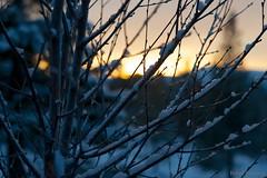 im336609 (bsvingen) Tags: winter sunset sun snow mountains nature norway verdal troendelag afszoomnikkor2470mmf28ged