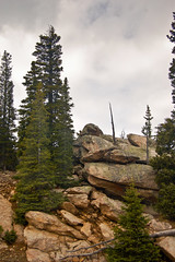 Road Up Mt Evans 03 (jimw630) Tags: rockies colorado rocks pines rockymountains mtevans