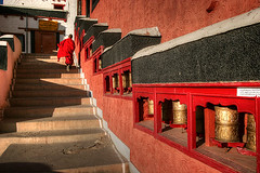 Red and Gold for the 49ers (hapulcu) Tags: india 49ers monastery kashmir superbowl himalaya leh ladakh inde tikse xlvii