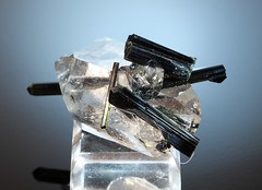 Tourmaline on Quartz (Cindy's Here) Tags: macro rock canon crystal mineral geology quartz tourmaline mineralogy