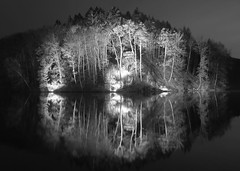Reflection (SF-Photo) Tags: lake tree nature water night germany de landscape deutschland see europa europe nacht outdoor natur landschaft bäume baum deu rheinlandpfalz rhinelandpalatinate ramsen freiland eiswoog