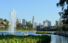 Labor Day in L.A. (dave87912) Tags: socal california losangeles la summer holiday sun palms echo park garden downtown cityscape skyline us bank tower fountain lake lotus pond dtla cityline relax
