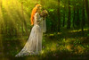 Enchanted (Moonless_Nigth_and_Melancholy) Tags: bride gown lady mysterious fairy fantasy dreamy conceptual wedding flowers woods forest
