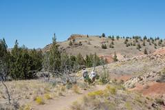 DSC_1881.jpg (da_martin) Tags: johnday oregon paintedhills fossilbed