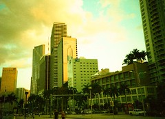 Miami (dobranch) Tags: miami crossprocessed uws film