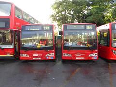 GAL 228 PO56JEU - 229 PO56JFA - BX BEXLEYHEATH BUS GARAGE - MON 22ND AUG 2016 (Bexleybus) Tags: goahead go ahead london bx bexleyheath bus garage kent tfl route metrobus 228 po56jeu 229 po56jfa adl denns dart east lancs esteme
