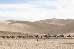 IMG_6822 (chungkwan) Tags: china chinese gansu province weather dry sands canon canonphotos travel world nature landmark landscape   dunhuang  crescent crescentlake  mingsha mingshamountain  camels silkroad