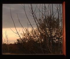 calidez (Litswds) Tags: teros rio mar sea river forest old viejo bosque ventana window argentina arbol verde nature green naraleza naturaleza vida viva vivir cielo flickr reljejo camino