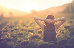 Hi September! (Gure Elia) Tags: september sunflower sunset bokeh samyang135f2 backlight back girl