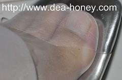 Dea-Honey-sexy-high-heel-Toe-186-dea-honey-sexy-high-heel-and-feet-pictures (deahoney) Tags: feet toes sexy high heel nylon stocking
