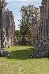 Bayham Abbey 26 (mini-b) Tags: bayhamabbey ruins englishheritage 13th15thcentury frant eastsussex canon eos5dmkii ef28300mm3556lisusm 2016