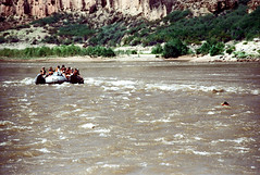 34-313 (ndpa / s. lundeen, archivist) Tags: nick dewolf nickdewolf color photographbynickdewolf 1970s 1973 film 35mm 34 reel34 arizona northernarizona southwesternunitedstates grandcanyon coloradoriver raftingtrip raftingexpedition rafting river riverrafting raft people inflatable sandersonriverexpeditions srig sanderson lifejackets lifepreservers flotationdevices swim swimmer swimming float floating 1972 sandersonraftingexpeditions