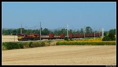Sorpresa! (AR5123) Tags: france train de roos 66 class spanish toulouse fret francia français villefranche bois adria sncf roig ews rouje 66000 lauragais 66026 ulayar