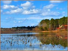 Loakfoma Lake, Noxubee Wildlife Refuge, MS (Suzanham) Tags: reflections refuge waterscape thegalaxy loakfomalake fantasticnature flickraward absolutelyperrrfect noxubewildliferefuge