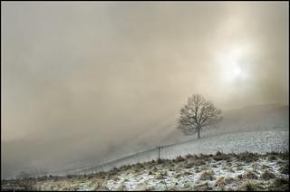 Cold Sun 3