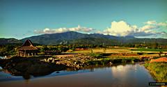 Maranaw (marlon mayugba) Tags: house architecture philippines fields kubo bahay maranaw lascasasfilipinas