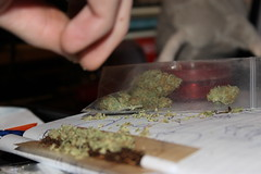 paapie (unholysnaak) Tags: weed groen joint wiet