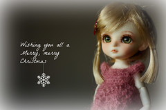Thinking about you all (buganville) Tags: christmas navidad best wishes merry feliz suji lati