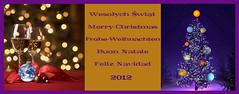 Wesoych-wit Merry-Christmas Frohe-Weihnachten Buon-Natale Feliz-Navidad (arjuna_zbycho) Tags: collage adobephotoshop merrychristmas feliznavidad krippe ecard szopka buonnatale froheweihnachten wesoychwit frhlicheweihnachten weichnachtsbaum postkart weihnachtsmotive