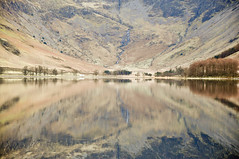 DSC_0280 Buttermere Reflections (wilkie,j ( says NO to badger cull :() Tags: autumn mountains nature reflections landscape nikon scenery lakes lakedistrict scenic autumncolours cumbria nationalparks nationaltrust nationalgeographic buttermere scenicwater sceniclandscape
