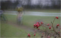 IMGP05141_-f (Thomas Sommer) Tags: lens mirror diy blurry bokeh background biker cyclocross gow eibergen kerstcross