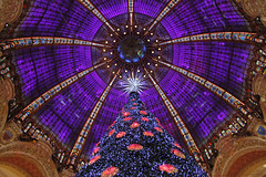 Galeries Lafayette - Paris (France) (Meteorry) Tags: christmas decorations paris france tree europe december lafayette haussmann crystal illuminations explore departmentstore dome swarovski nol galerieslafayette sapin 2012 boulevardhaussmann coupole grandmagasin flagshipstore meteorry ferdinandchanut georgeschedanne thophilebader alphonsekahn christmasofthecentury