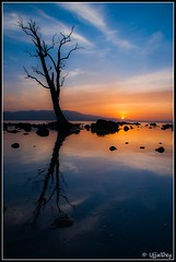 Sunset (ujjal dey) Tags: sunset sun reflection tree silhouette clouds dreams andaman ujjal chidiyatapu nikond90 nikon18105mm ujjaldey ujjaldeyin