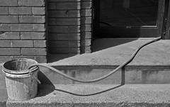 Into the Bucket (JeffStewartPhotos) Tags: blackandwhite bw toronto ontario canada blackwhite bucket construction spadinaavenue torontophotowalk topw torontophotowalks topwsa2 spadinaavenue2