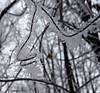 (Sarah-Vie) Tags: hiver givre flocondeneige