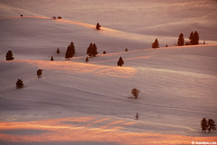 Bulgaria has Palouse too ; ) (.:: Maya ::.) Tags: pink winter light sunset mountain snow nature bulgaria rila valley         belmeken    mayaeye mayakarkalicheva