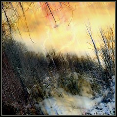 Winter Shock (Tim Noonan) Tags: trees winter light shadow sky snow colour texture electric digital photoshop bush raw wind canadian freeze shield atmospheric mosca tundra meteorology hypothetical tistheseason vividimagination artdigital greenscene shockofthenew scomposition stickybeak newreality sharingart maxfudge awardtree maxfudgeawardandexcellencegroup magicunicornverybest magiktroll exoticimage finestgold digitalartscene netartii donnasmagicalpix kurtpeiserexcellence vividnationexcellencegroup