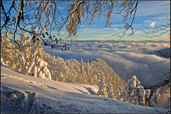 Les Rochers de Tablettes and the Alpes,sunset of 12 12 12 .No 1628. (Izakigur) Tags: winter snow mountains alps alpes liberty schweiz switzerland nc nikon bravo europa europe flickr suisse suiza swiss feel ne jura neige alpen helvetia nikkor 1001nights svizzera neuchatel montblanc neuchtel lepetitprince ch berna dieschweiz musictomyeyes  sussa neuenburg suizo chauxdefonds romandie suisseromande  lachauxdefonds myswitzerland lasuisse   cantondeneuchtel d700  nikond700 nikkor2470f28 nikkor2470 izakigur cantondeneuchatel nikon2470f28 nikon2470mmf28g cantonofneuchatel  suisia laventuresuisse izakigurneuchatel 1001nightsmagiccity mygearandme paysdeneuchtel izakiguralps izakigurneuchtel izakigurjura  izakigur2012 izakigurd700 lesrochersdetablettes