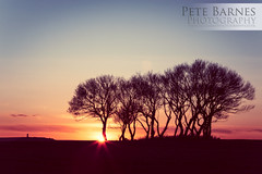 Sunset over Castle Hill (Pete Barnes Photography) Tags: trees sunset sky sun colour art silhouette clouds vintage landscape photography evening photographer wind yorkshire horizon fineart group scene bunch castlehill huddersfield whisp lean landscapephotography lepton landscapephotographer huddersfied petebarnesphotography