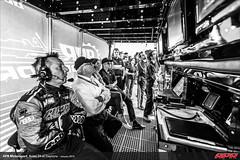 APR-Motorsport-Rolex-24-2013-194