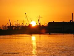 Hafen Hamburg (Porschi1) Tags: elbe hamburg hafen finkenwerder