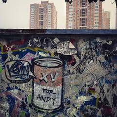 Beijing   Wangjing   Street Art Update (jan.martin) Tags: mural wall graffiti stencil andy warhol andywarhol soup campbell china beijing wangjing street art streetart backyard