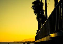 Observer (Hernan Piñera) Tags: foto fotografia photo photography imagen image pic fotografo hernanpiñera photograph photographer atardecer hombre silueta mirador observador mira observa cintemplacion contempla baranda barandilla silhouette sunset man observer observes contemplates look lookout railing